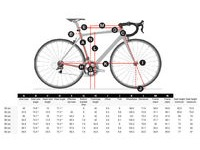 TREK Domane SLR Frame Set click to zoom image