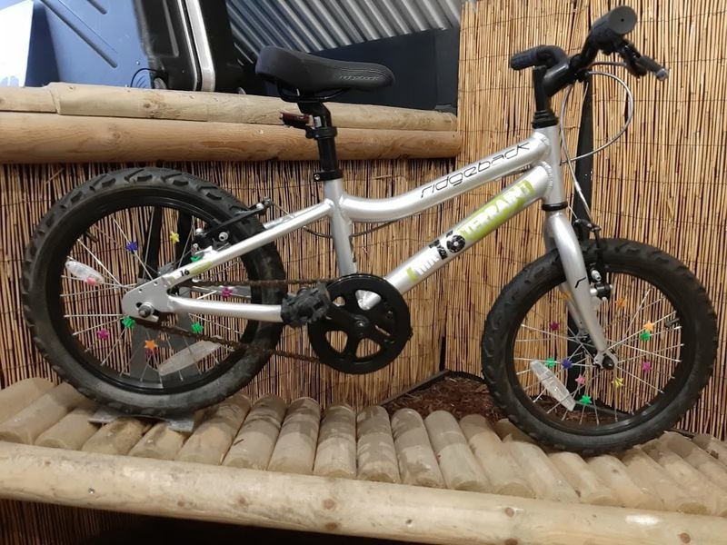 RIDGEBACK MX16 click to zoom image